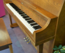 Yamaha P202 studio piano, oak